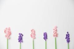 Όμορφο σχέδιο λουλουδιών εγγράφου Στοκ εικόνες με δικαίωμα ελεύθερης χρήσης