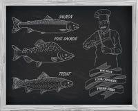 Όμορφο σχέδιο του σολομού, της πέστροφας και του ρόδινου σολομού Στοκ Φωτογραφία