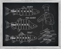 Όμορφο σχέδιο του σολομού, της πέστροφας και του ρόδινου σολομού Στοκ φωτογραφία με δικαίωμα ελεύθερης χρήσης