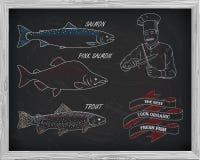 Όμορφο σχέδιο του σολομού, της πέστροφας και του ρόδινου σολομού Αρχιμάγειρας με το kn Στοκ φωτογραφία με δικαίωμα ελεύθερης χρήσης