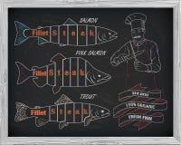 Όμορφο σχέδιο του σολομού, της πέστροφας και του ρόδινου σολομού Αρχιμάγειρας με το kn Στοκ Εικόνες
