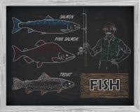 Όμορφο σχέδιο του σολομού, της πέστροφας και του ρόδινου σολομού WI ψαράδων Στοκ Εικόνες