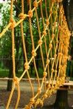 Όμορφο σχοινί και καθαρή αναρρίχηση στο πάρκο στη φύση στοκ εικόνα