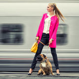 Όμορφο σύγχρονο κορίτσι με ένα σκυλί στην πλατφόρμα Στοκ φωτογραφία με δικαίωμα ελεύθερης χρήσης