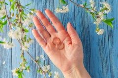 Όμορφο σύνολο γαμήλιων δαχτυλιδιών Στοκ Φωτογραφία