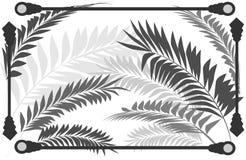 Όμορφο της υφής υπόβαθρο με τα φύλλα φοινικών Στοκ εικόνες με δικαίωμα ελεύθερης χρήσης