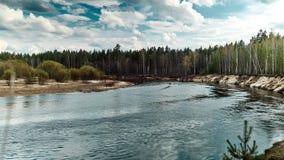 Όμορφο τοπίο άγριας φύσης Ποταμός στη μέση των δασικών χρονικών περιτυλίξεων απόθεμα βίντεο