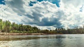 Όμορφο τοπίο άγριας φύσης Ποταμός στη μέση των δασικών χρονικών περιτυλίξεων φιλμ μικρού μήκους