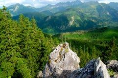 Όμορφο τοπίο βουνών με τις απόψεις της βαθιάς κοιλάδας στοκ φωτογραφία με δικαίωμα ελεύθερης χρήσης