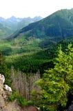 Όμορφο τοπίο βουνών με τις απόψεις της βαθιάς κοιλάδας στοκ εικόνα