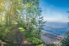 Όμορφο τοπίο Δασικός βρώμικος δρόμος στην ακτή κατά μήκος της λίμνης στοκ εικόνα