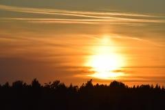 Όμορφο τοπίο ηλιοβασιλέματος πέρα από το δάσος στοκ φωτογραφία