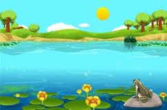 Όμορφο τοπίο λιμνών με το βάτραχο Απεικόνιση αποθεμάτων