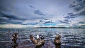 Όμορφο τοπίο λιμνών φιλμ μικρού μήκους