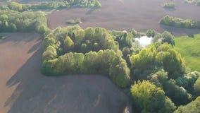 Όμορφο τοπίο καλλιεργήσιμου εδάφους άνοιξη με τους σπαρμένους τομείς, άλσος και λίμνη, εναέρια απόθεμα βίντεο