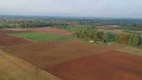 Όμορφο τοπίο καλλιεργήσιμου εδάφους άνοιξη με τους τομείς και τα άλση, εναέριους απόθεμα βίντεο