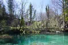 Όμορφο τοπίο κατά μήκος του τρόπου στο εθνικό πάρκο λιμνών Plitvice Στοκ φωτογραφία με δικαίωμα ελεύθερης χρήσης