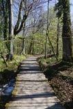 Όμορφο τοπίο κατά μήκος του τρόπου στο εθνικό πάρκο λιμνών Plitvice Στοκ Φωτογραφίες
