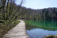 Όμορφο τοπίο κατά μήκος του τρόπου στο εθνικό πάρκο λιμνών Plitvice Στοκ εικόνα με δικαίωμα ελεύθερης χρήσης