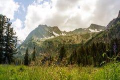 Όμορφο τοπίο με τη φωτεινή ηλιόλουστη ημέρα υψηλών βουνών στοκ φωτογραφία με δικαίωμα ελεύθερης χρήσης