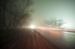Όμορφο τοπίο νύχτας του ομιχλώδους δρόμου σε ένα σκοτεινό δάσος μετά από τη βροχή φλυάρων στοκ εικόνες