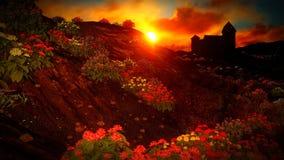 όμορφο τοπίο λουλουδιών Στοκ Φωτογραφία