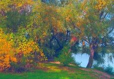 Όμορφο τοπίο που παρουσιάζει δάσος φθινοπώρου εκτός από την ακτή ποταμών Στοκ Φωτογραφία