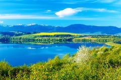 Όμορφο τοπίο, πράσινες και κίτρινες λιβάδι και λίμνη με το βουνό στο υπόβαθρο Σλοβακία, κεντρική Ευρώπη Στοκ Εικόνες