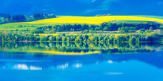 Όμορφο τοπίο, πράσινες και κίτρινες λιβάδι και λίμνη με το βουνό στο υπόβαθρο Σλοβακία, κεντρική Ευρώπη Στοκ Φωτογραφίες