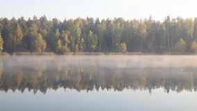 Όμορφο τοπίο πτώσης φθινοπώρου πέρα από την ομιχλώδη λίμνη απόθεμα βίντεο