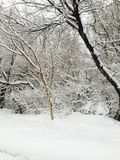 Όμορφο τοπίο πτώσης χιονιού Στοκ φωτογραφία με δικαίωμα ελεύθερης χρήσης