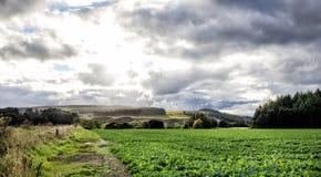 όμορφο τοπίο σκωτσέζικα Στοκ εικόνα με δικαίωμα ελεύθερης χρήσης
