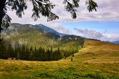 Όμορφο τοπίο στα Καρπάθια βουνά Δασικός λόφος στη νεφελώδη ημέρα στην άνοιξη με τη διαμόρφωση στοκ εικόνα με δικαίωμα ελεύθερης χρήσης