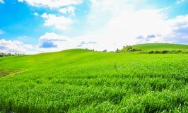 Όμορφο τοπίο στην Τοσκάνη Στοκ εικόνα με δικαίωμα ελεύθερης χρήσης