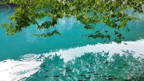 Όμορφο τοπίο στις λίμνες Plitvice Στοκ φωτογραφία με δικαίωμα ελεύθερης χρήσης