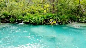 Όμορφο τοπίο στις λίμνες Plitvice Στοκ Εικόνες