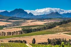 Όμορφο τοπίο του ακρωτηρίου Winelands, περιοχή αμπελοκαλλιέργειας στη Νότια Αφρική στοκ φωτογραφίες με δικαίωμα ελεύθερης χρήσης