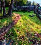 Όμορφο τοπίο του φθινοπώρου σε Xinjiang Στοκ Εικόνες
