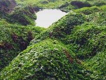Όμορφο τοπίο των απότομων βράχων στοκ φωτογραφία με δικαίωμα ελεύθερης χρήσης