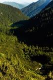 Όμορφο τοπίο των ρουμανικών βουνών Negoiu Porumbacu de Sus Cabana Negoiu Sibiu Δασικές καταπληκτικές διακοπές ι Στοκ φωτογραφίες με δικαίωμα ελεύθερης χρήσης