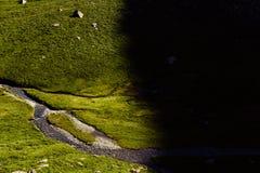 Όμορφο τοπίο των ρουμανικών βουνών Negoiu Porumbacu de Sus Cabana Negoiu Sibiu Δασικές καταπληκτικές διακοπές ι Στοκ Εικόνες