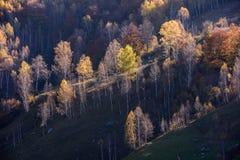 Όμορφο τοπίο φθινοπώρου στα βουνά, Ρουμανία στοκ εικόνες