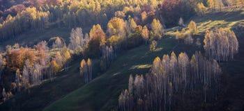 Όμορφο τοπίο φθινοπώρου στα βουνά, Ρουμανία στοκ φωτογραφία