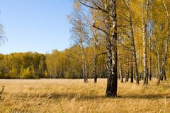 όμορφο τοπίο φθινοπώρου στοκ εικόνα με δικαίωμα ελεύθερης χρήσης