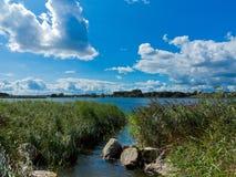 Όμορφο τοπίο όχθεων ποταμού με τη ζώνη καλάμων Στοκ φωτογραφία με δικαίωμα ελεύθερης χρήσης