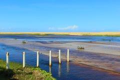 Όμορφο τοπίο Barra de Punaú, όπου τα νερά του ποταμού Punaú συναντούν τη θάλασσα/γενέθλιος, Βραζιλία Στοκ φωτογραφία με δικαίωμα ελεύθερης χρήσης