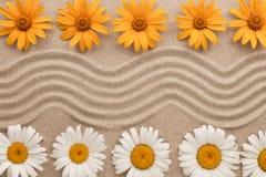 Όμορφο τρέκλισμα της άμμου και των λουλουδιών που βρίσκεται στην άμμο Στοκ Φωτογραφία