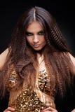 όμορφο τρίχωμα brunette μακρύ Στοκ Φωτογραφία