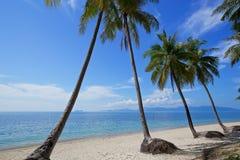 Όμορφο τροπικό δέντρο καρύδων άμμου παραλιών άσπρο με το μπλε ουρανό ο Στοκ εικόνα με δικαίωμα ελεύθερης χρήσης