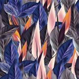 Όμορφο τροπικό σχέδιο με το μπλε Στοκ φωτογραφία με δικαίωμα ελεύθερης χρήσης
